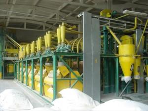 production flour